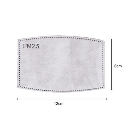 10 filtres PM2,5